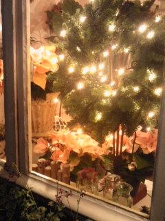 クリスマスブッシュ!_a0229658_1937219.jpg