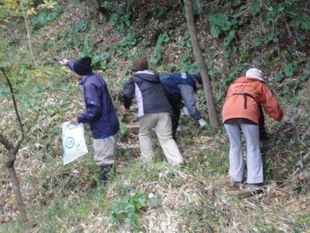 カブトムシ幼虫のためにチップを運ぶ  in  うみべの森_c0108460_17303032.jpg