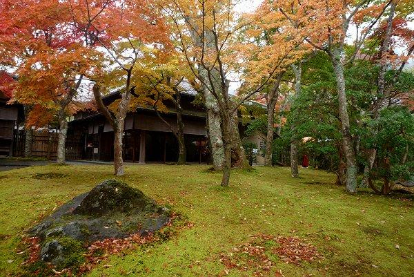 晩秋の風景・その3_d0030373_2252387.jpg