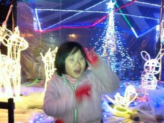木曽三川公園のイルミネーションもいいです_c0215194_0202543.jpg