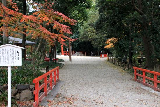紅葉の終幕 下鴨神社 糺の森_e0048413_2274754.jpg
