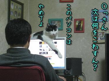 b0151748_1219790.jpg