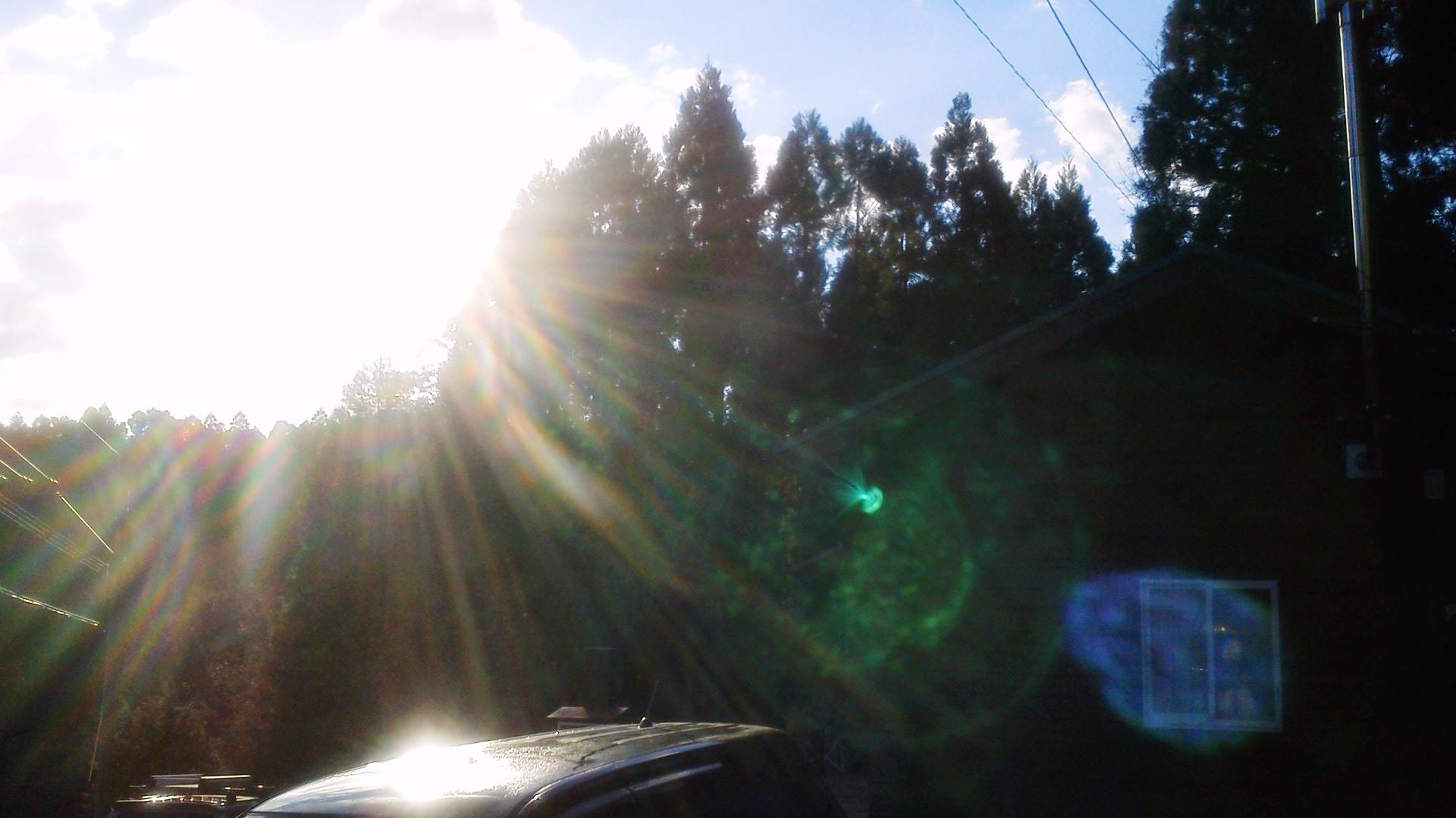 キラキラ☆光のシャワー_a0174458_110849.jpg