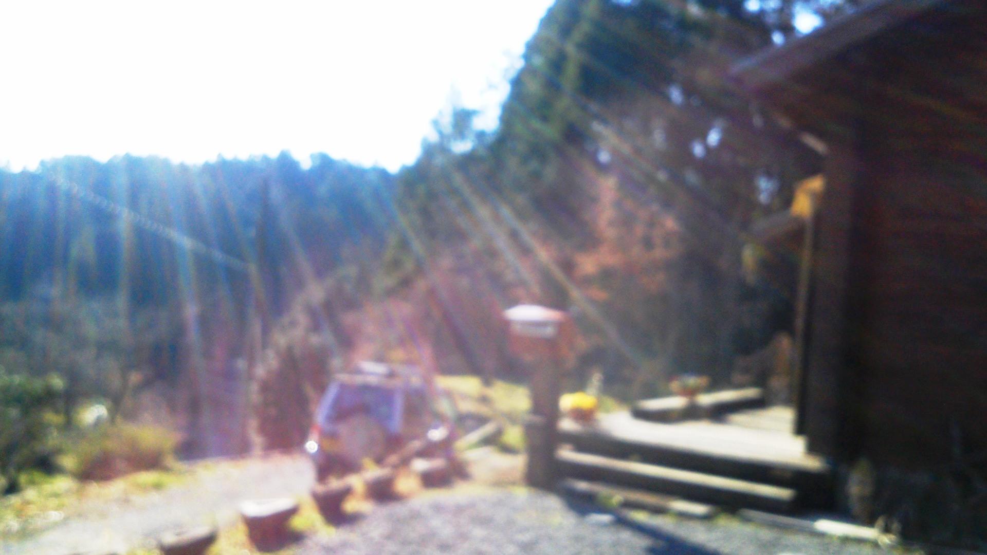 キラキラ☆光のシャワー_a0174458_1373173.jpg