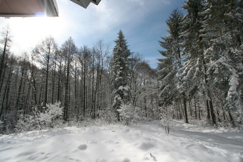 長野3(雪 その1)_d0133581_16363145.jpg