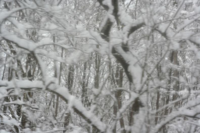 長野3(雪 その1)_d0133581_16364616.jpg