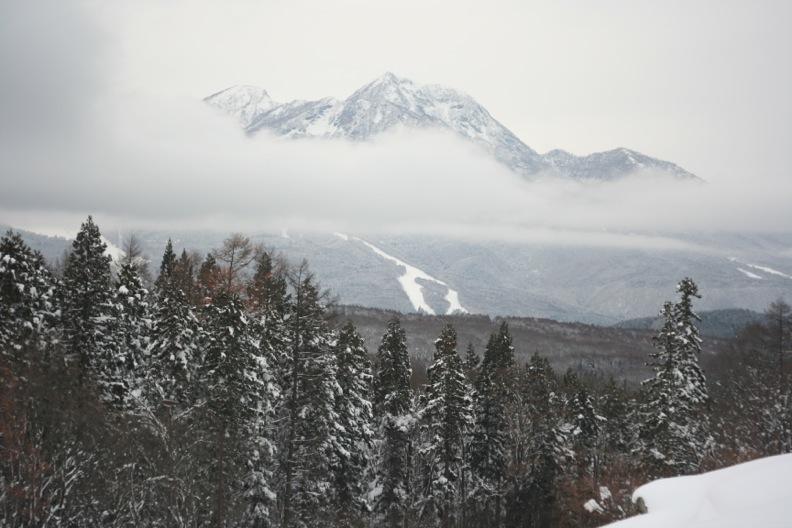 長野3(雪 その1)_d0133581_16373249.jpg