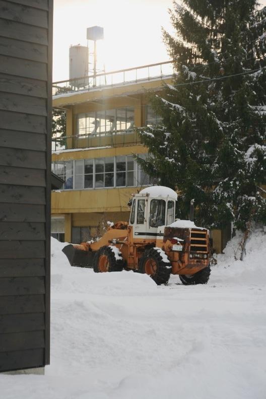 長野3(雪 その2)_d0133581_16412378.jpg