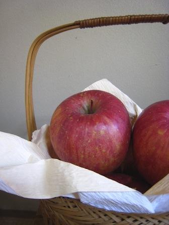 りんごのうた_d0154102_13243330.jpg