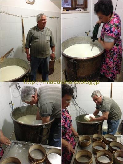 カステッルッチョで羊のチーズ作り見学_b0107003_11453967.jpg