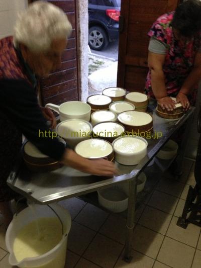カステッルッチョで羊のチーズ作り見学_b0107003_11475418.jpg