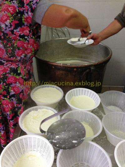 カステッルッチョで羊のチーズ作り見学_b0107003_11504398.jpg