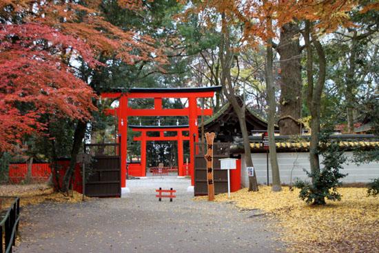 河合神社と糺の森_e0048413_1971878.jpg