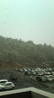 【今季初・本格的な雪】_e0094315_1272457.jpg