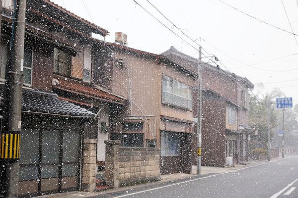 初雪_f0007926_10543074.jpg