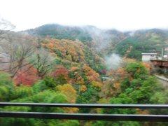 鎌倉七福神ウォーク_f0019247_0572065.jpg