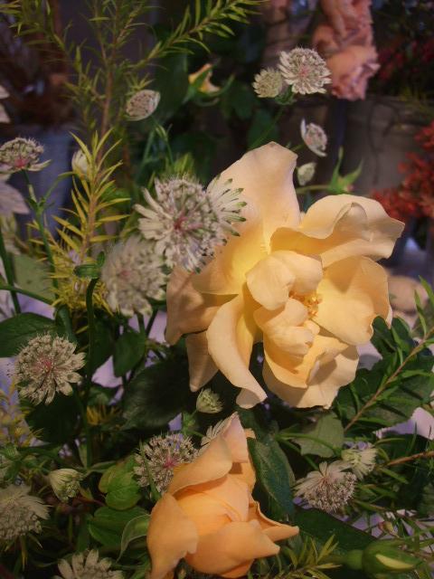 オークリーフ花の教室(落合さんと北条さんの作品)_f0049672_1728814.jpg
