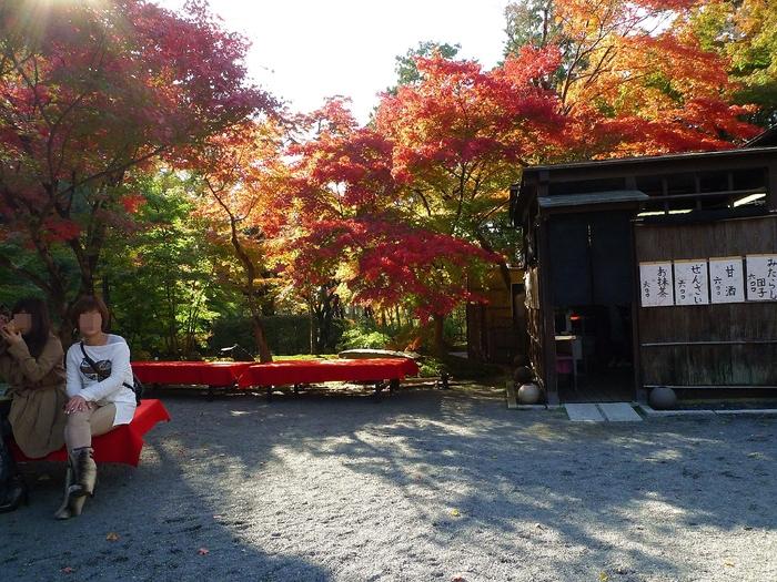 京都出張2012 ② **  紅葉の名所 禅林寺(永観堂)編 11月12日 **_e0142189_2226326.jpg