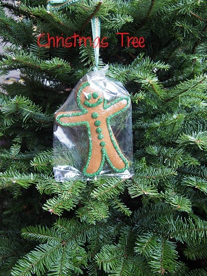 Christmas Tree 2012_d0088196_11164257.jpg