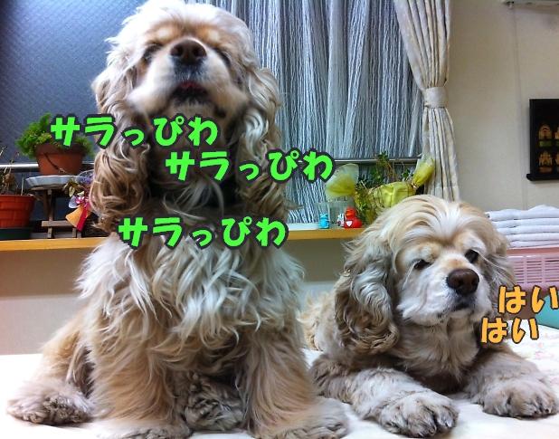 b0067012_2356481.jpg