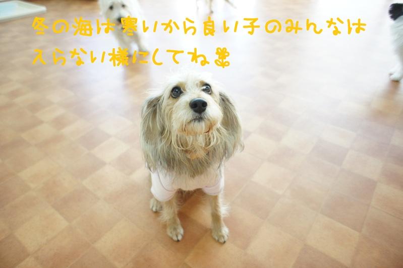 d0220513_18135791.jpg