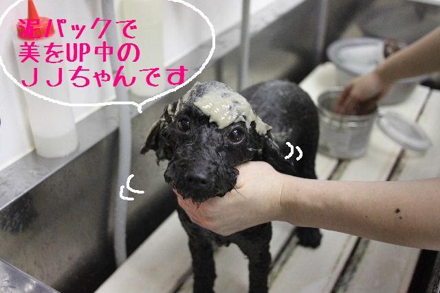 幸せぇ~~!!_b0130018_0214098.jpg