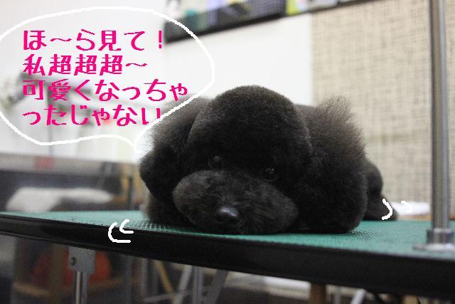 幸せぇ~~!!_b0130018_0223880.jpg