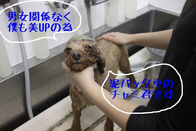 幸せぇ~~!!_b0130018_022598.jpg