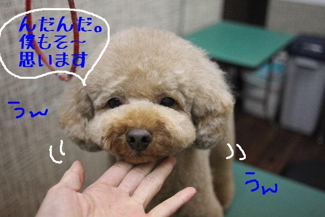 幸せぇ~~!!_b0130018_023228.jpg