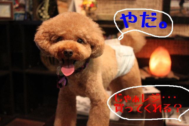 幸せぇ~~!!_b0130018_0234213.jpg