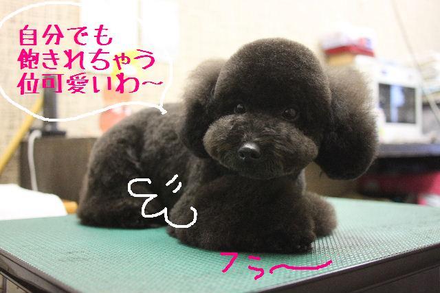 幸せぇ~~!!_b0130018_023652.jpg