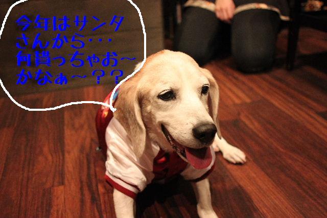 幸せぇ~~!!_b0130018_0252452.jpg