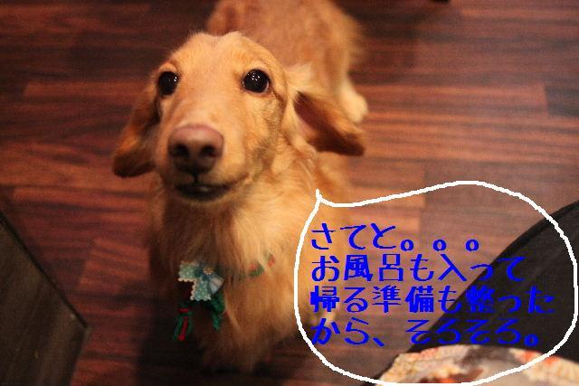 幸せぇ~~!!_b0130018_0311857.jpg