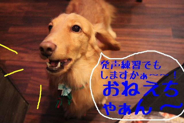 幸せぇ~~!!_b0130018_0312460.jpg