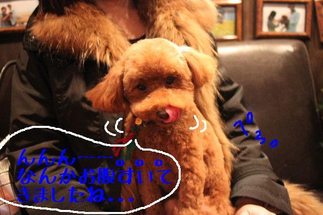 幸せぇ~~!!_b0130018_0325175.jpg