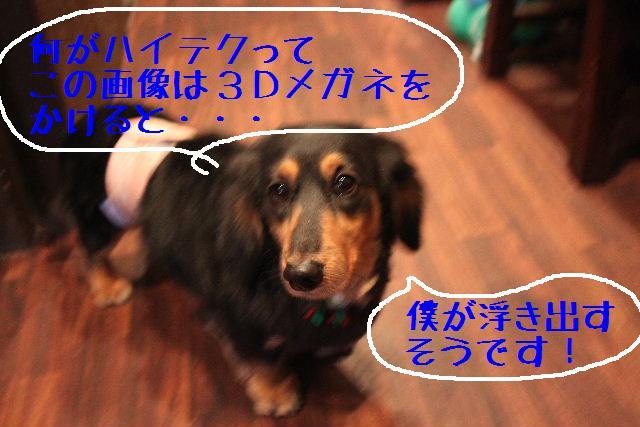 幸せぇ~~!!_b0130018_0344151.jpg