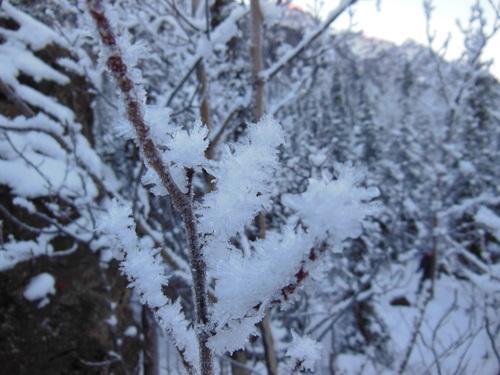 真冬のハイキング_b0135948_456429.jpg