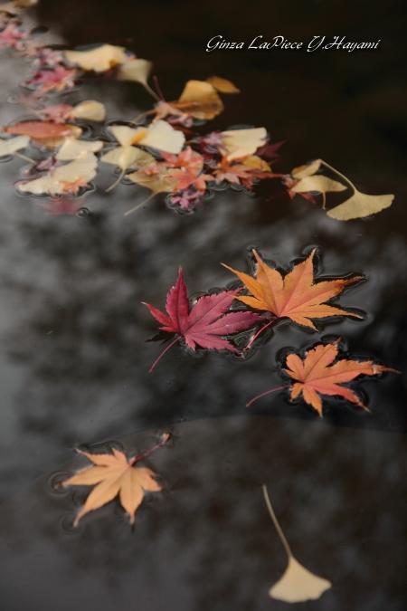 風景の写真 池のもみじ_b0133053_23454362.jpg