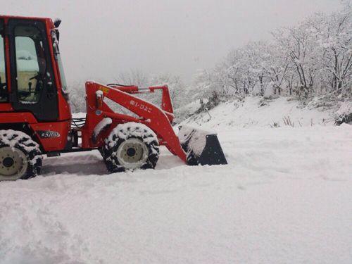 いきなり大雪です!_e0266363_18553487.jpg
