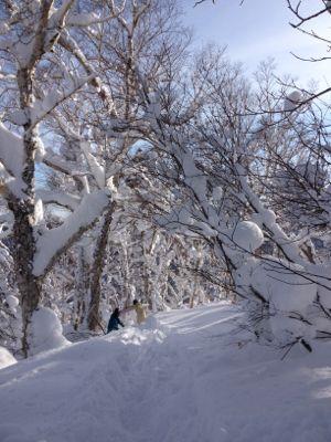 北海道7日目 ☆ 札幌国際スキー場_c0151965_14151278.jpg