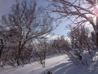 北海道7日目 ☆ 札幌国際スキー場_c0151965_141514100.jpg