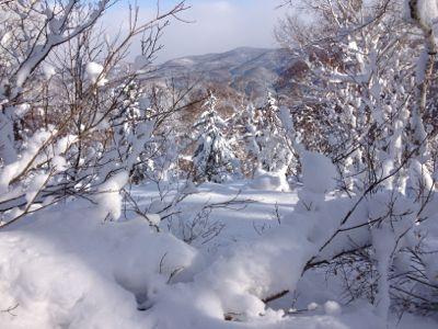 北海道7日目 ☆ 札幌国際スキー場_c0151965_14151914.jpg