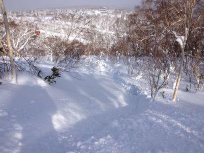 北海道7日目 ☆ 札幌国際スキー場_c0151965_1415973.jpg