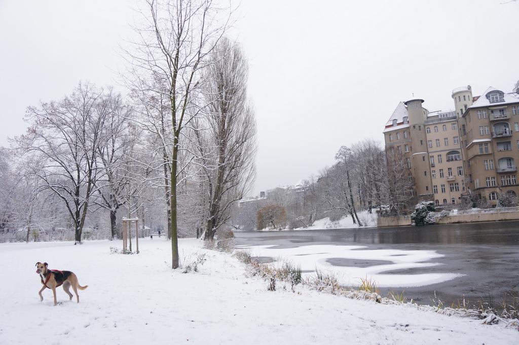 ベルリン、真っ白です。_c0180686_6135026.jpg