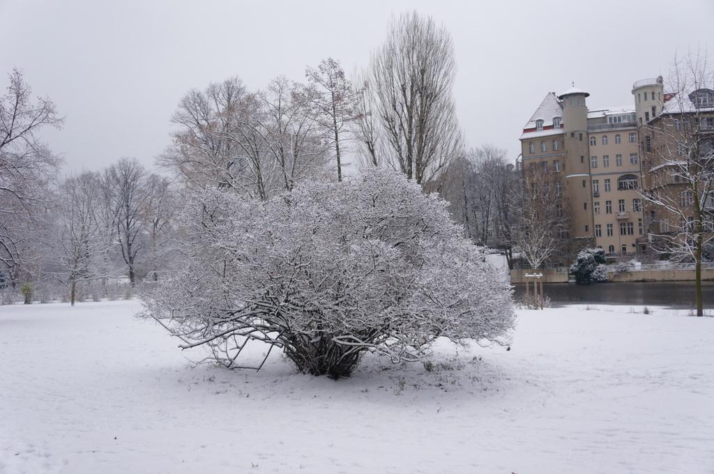 ベルリン、真っ白です。_c0180686_614029.jpg