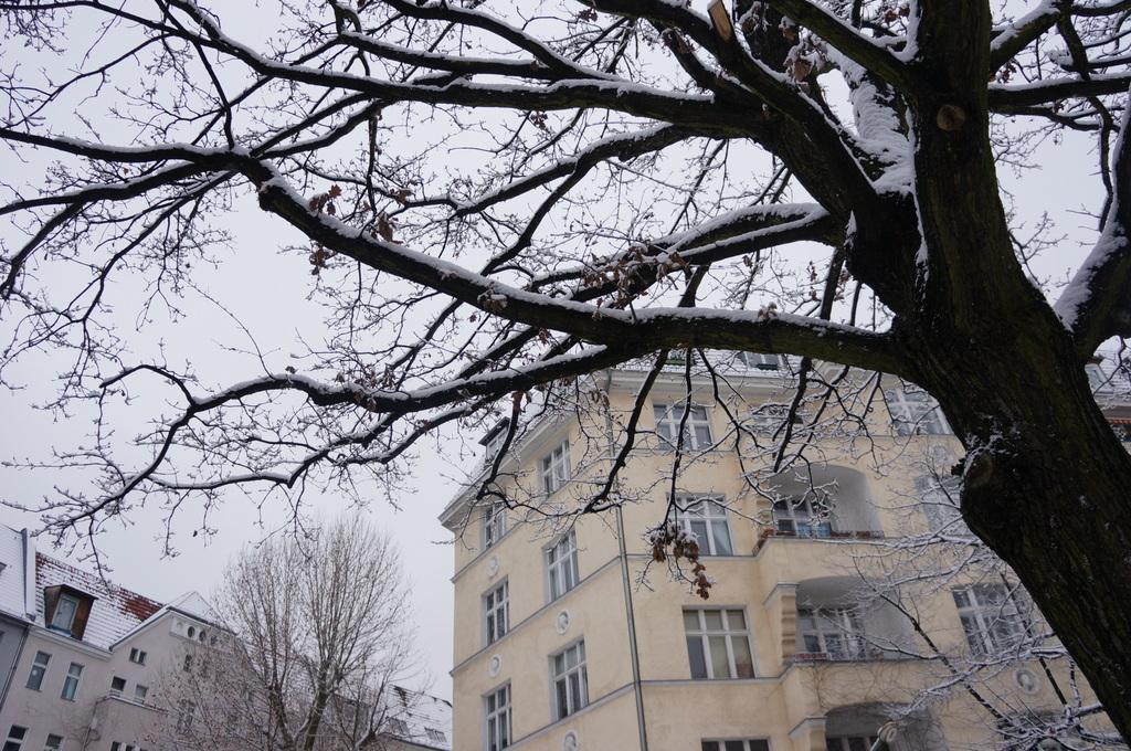 ベルリン、真っ白です。_c0180686_6141067.jpg