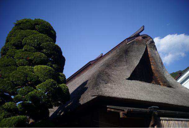 東京西部 酒蔵巡り忘年会_d0147406_13131494.jpg