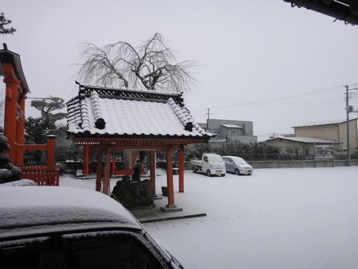 除雪_c0111229_179875.jpg