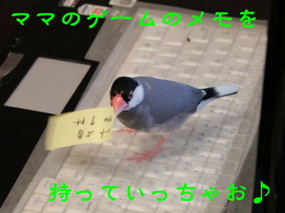 b0158061_2237870.jpg
