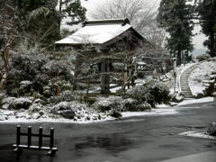 初雪 到来 _a0274383_9172851.jpg